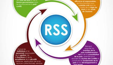 La réforme du secteur de la sécurité (RSS) est une priorité dans les efforts de prévention de conflits de UNOWAS.