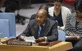 Gambie : la CEDEAO prête à envoyer des troupes pour faire respecter le résultat des élections