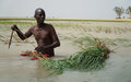 World Food   Programme  reinforces the resilience of the population in the Sahel
