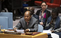 """Briefing of the Special Representative for West Africa and the Sahel to the Security Council: """"Despite positive political developments, the region continues to witness a devastating surge in terrorist attacks"""""""